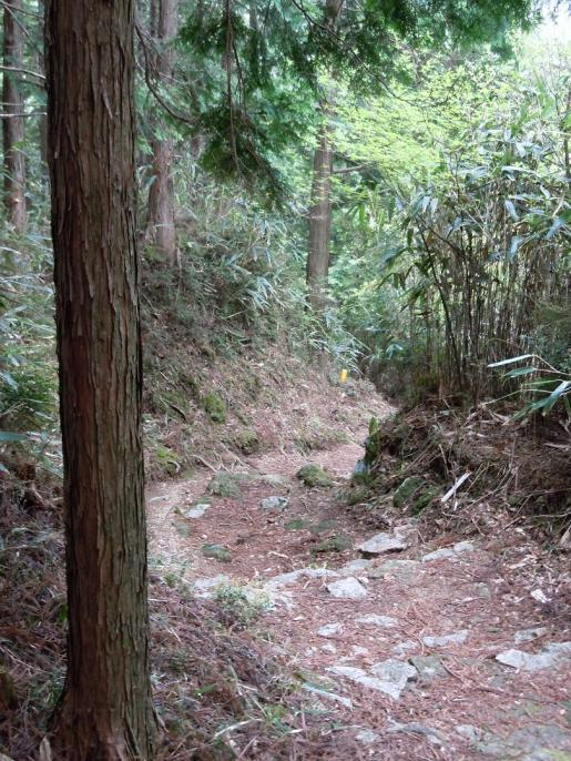 DSCN0272石畳の下り坂.JPG