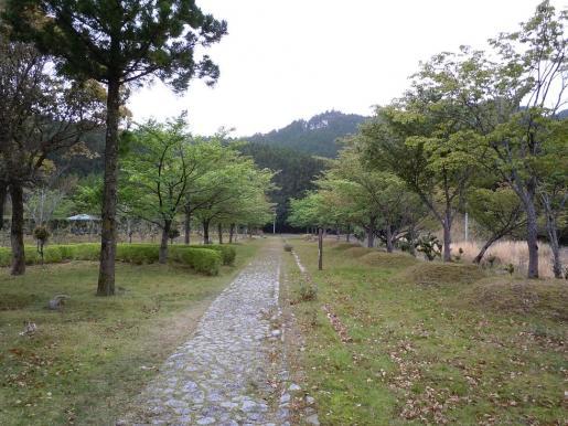 DSCN0243那智高原公園.JPG